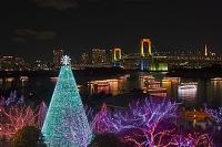東京都 クリスマスイルミネーション台場メモリアルツリーと屋形...