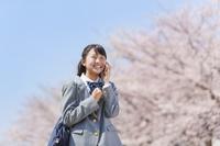 桜とスマホで通話する女子中学生