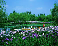 千葉県 佐原水生植物園