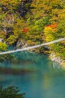 静岡県 寸又峡の夢の吊橋