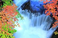 栃木県 奥日光 竜渦の滝と紅葉