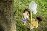虫捕りをしているハーフの男の子と女の子