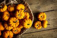 かぼちゃ 集合
