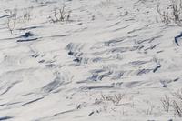 カナダ トゥームストーン準州立公園 シュカブラ