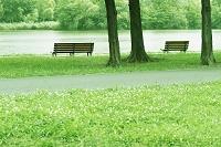 水辺のベンチ CG