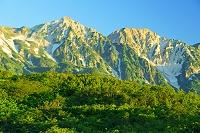 長野県 朝の八方尾根から白馬鑓ケ岳(左)と杓子岳(右)