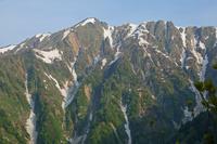 長野県 爺ケ岳登山道から岩小屋沢岳