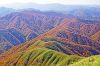 福井県 荒島岳からの秋の山陵