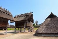 佐賀県 吉野ヶ里歴史公園