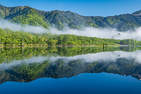 長野県 新緑の上高地 大正池湖畔から見る穂高連峰