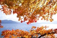 秋田県 田沢湖畔紅葉