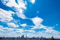 青空と都市