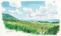 石垣島の平久保牧場