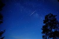 木々の間から見える星空と流れ星