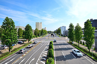 茨城県 つくば市 学園中央通り