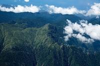 屋久島 障子岳 永田岳周辺(世界自然遺産 屋久島国立公園)
