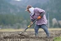 山里 畑仕事の老女