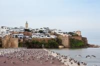 モロッコ ラバト カスバ