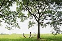犬の散歩をする日本人の子供達