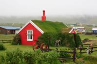 アイスランド バッカゲルジ 芝生が覆う民家