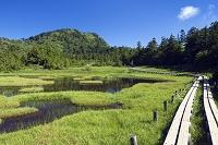 長野県 四十八池と裏志賀山
