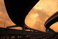東京都 有明 木漏れ日と高架橋