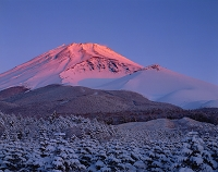 静岡県 富士山 快晴の朝