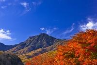 山梨県 八ヶ岳連峰と紅葉