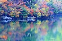 栃木県 奥日光・湯ノ湖 紅葉と水面