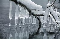 青森県 十和田市 十和田湖 しぶき氷