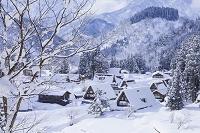 富山県 五箇山の相倉集落