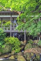 茨城県 雨引観音(楽法寺)
