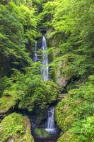 日本 高知県 長沢の滝