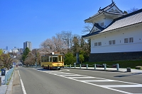 宮城県 桜と仙台城址とるーぷる仙台