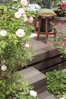 ガーデニング ウッドデッキと花