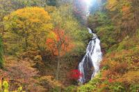 秋田県 七滝と朝の木漏れ日