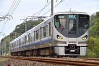 和歌山県 紀勢本線 225系普通電車