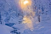 アラスカ 雪景色