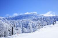 山形県 蔵王温泉スキー場