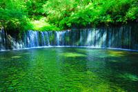 長野県 軽井沢 白糸の滝 朝