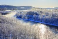 北海道 霧氷の釧路川朝景