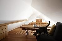 ロフトのソファに座るネコと渡り廊下と天井