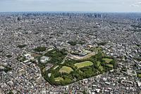 東京都 練馬区・板橋区城北中央公園の空撮