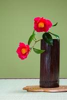竹にいけた椿の花