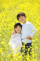 菜の花畑で虫取りをする兄妹