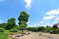 東京都 国分寺市 武蔵国分寺公園