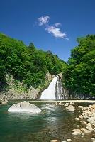 新緑の法体の滝