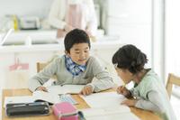 勉強する日本人の兄弟