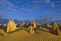 オーストラリア ナンバン国立公園 ピナクルズ奇岩群