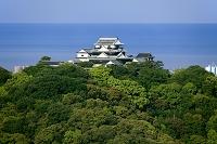 愛媛県 松山城と新緑と瀬戸内海